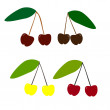 Cherry, vector set — Stok Vektör