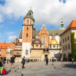 On territory of Royal palace in Wawel — Stockfoto