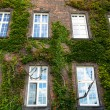 ストック写真: Windows of Wawel Castle in Krakow, Poland.