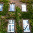 Photo: Windows of Wawel Castle in Krakow, Poland.