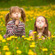 Little sisters blowing dandelion seeds away in the meadow — Photo