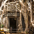 Angkor Wat — Stock Photo