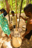 Unidentified people Orang Asli thresh rice to remove chaff in Berdut, Malaysia. — 图库照片