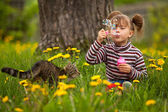 Lovely little girl and a cat, blowing soap bubbles — Stock Photo