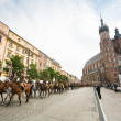 Polish cavalry in Krakow — Photo