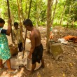 Stock Photo: People Orang Asli thresh rice