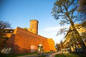 Pałac królewski na wawelu w krakowie — Zdjęcie stockowe