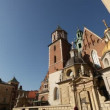 Royal palace in Wawel in Krakow, Poland. — Stock Video