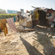 Stock Photo: Illegal houses at slums