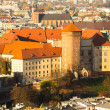 Aerial view of Royal Wawel castle with park and Vistula river — Stock Photo #38719071
