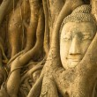 Stock Photo: The Head of Buddha in Wat Mahathat