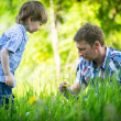 Father with his small son playing in the grass — Stock Photo #38719577