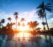 Piękny zachód słońca na plaży w tropikach — Zdjęcie stockowe
