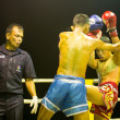 Unidentified young Muaythai fighters in ring during match on Chang, Thailand. — Stock Photo #39025415