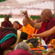 Stock Photo: TibetBuddhist monks