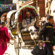 Unidentified nepali rickshaw in Kathmandu, Nepal. — Stock Photo #40565595