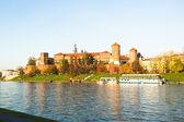 Vistula River in Poland — Stock Photo