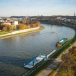 Aerial view of VistulRiver — Stock Photo #41829949