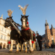 Carriages at Main Market Square — Stock Photo #41830081