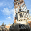 Eros Bendato in Krakow — Stock Photo #43942925