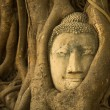 Head of Buddha in Wat Mahathat — Stock Photo #44950589