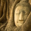 Head of Buddha in Wat Mahathat — Stock Photo #44959025