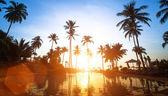 Beach in the tropics — ストック写真