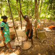 Постер, плакат: Unidentified people Orang Asli thresh rice to remove chaff