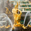 Famous Samson and Lion fountain in Peterhof Grand Cascade — Stockfoto
