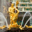 Famous Samson and Lion fountain in Peterhof Grand Cascade — Foto Stock