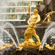 Famous Samson and Lion fountain in Peterhof Grand Cascade — Stock fotografie #45246169