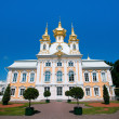West side of Peterhof Palace in St.Petersburg, Russia — Stock Photo #45246269