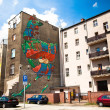 Graffiti murals by unknown artist created of the Katowice Street Art Festival — Stock Photo #45246485