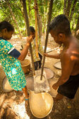 Unidentified people Orang Asli thresh rice to remove chaff — Stock Photo