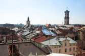 城市景观从屋顶的历史建筑房子的传说 — 图库照片