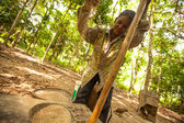 Unidentified women Orang Asli thresh rice to remove chaff — Stock Photo