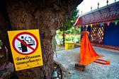 Unidentified child spend a monk at a Buddhist monastery Wat Klong Prao — Stock Photo