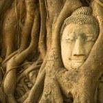 Close-up Head of Buddha — Stock Photo #46517837