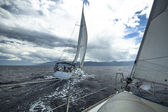 Unidentified sailboats participate in sailing regatta — Stock Photo