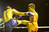 Unidentified Muay Thai fighters compete — Stock Photo