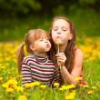 Two sisters blowing dandelion seeds — Stock Photo #47274627