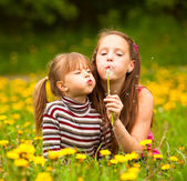 Two sisters blowing dandelion seeds — Stock Photo