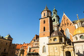 Royal palace in Wawel — Foto Stock