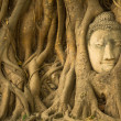 The Head of Buddha in Thailand. — Stock Photo #47677503