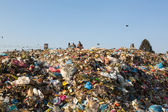 Food and pile of domestic garbage in landfill — Foto Stock