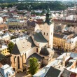 Top view from Lviv City — Stock Photo #47857589
