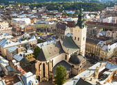 Cathedral in Lviv. — Stock Photo