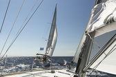 Veleros de regata — Foto de Stock