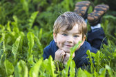 Cute little boy in the grass — Stock Photo