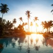 Beach in the tropics on sunset — Stock Photo #49459379